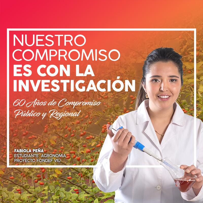 movil-investigacion